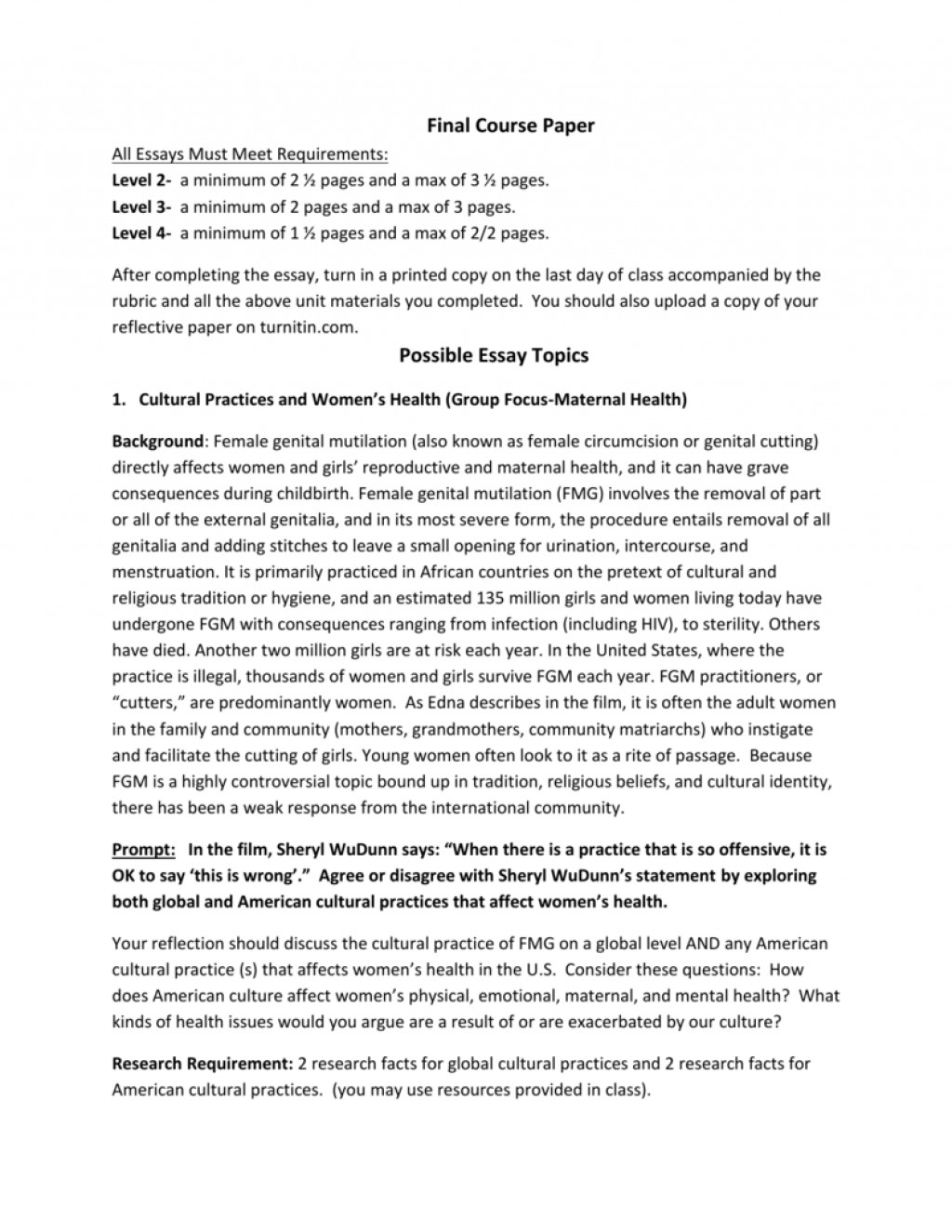 001 009588419 1 Essay Example Culture Astounding Reflection Shock Paper Cultural Identity Reflective Large