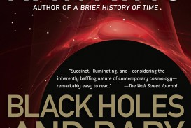 001 Black Holes And Baby Universes Other Essays Essay Example Unique Review Ebook Free Download Amazon