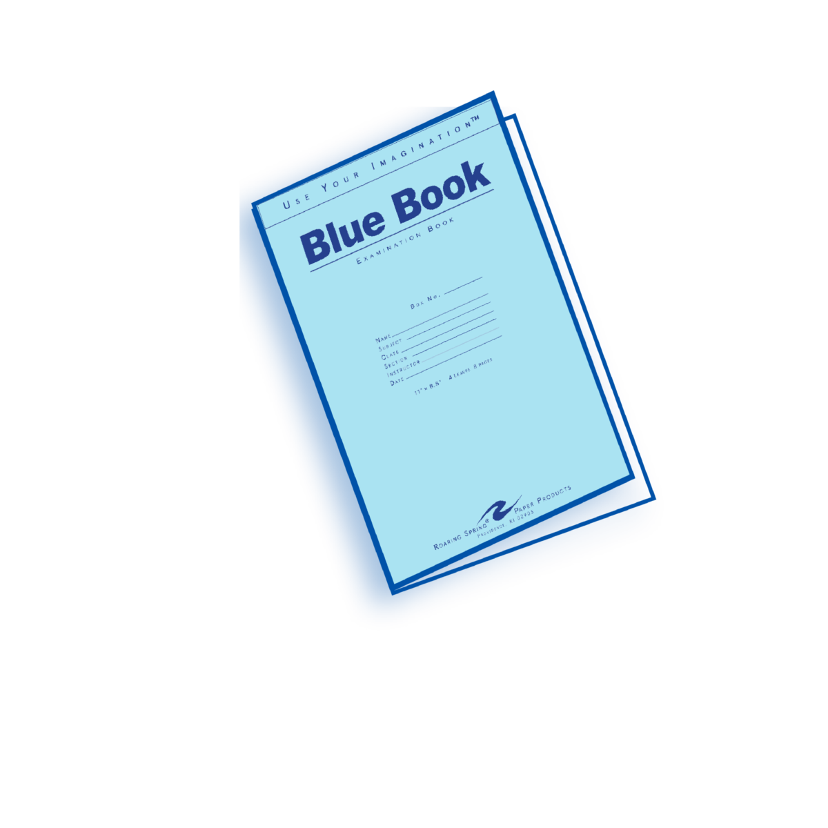 001 Blue Book Essay Example 1200px Magnificent Little Writing Full