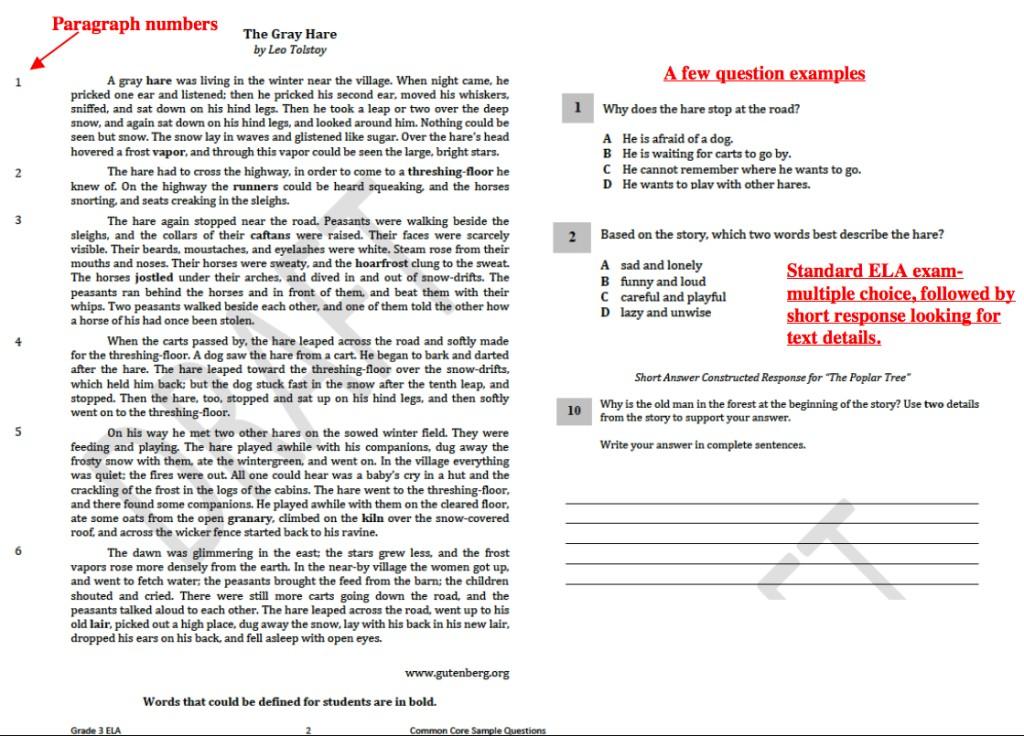 001 Common Core Essay Questions 3rd Grade Ela Marvelous 2017 Large