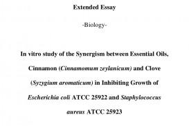 001 Essay Example Cinnamoncloveeeibo Phpapp02 Thumbnail Ib Biology Extended Singular Examples Good Topics