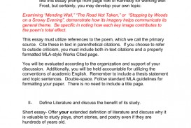 001 Essay Example Definition Literature 009279474 1 Striking Review Expository