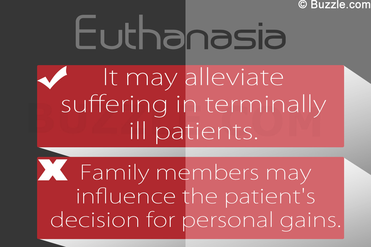 001 Essay Example Euthanasia Pros And Cons Magnificent