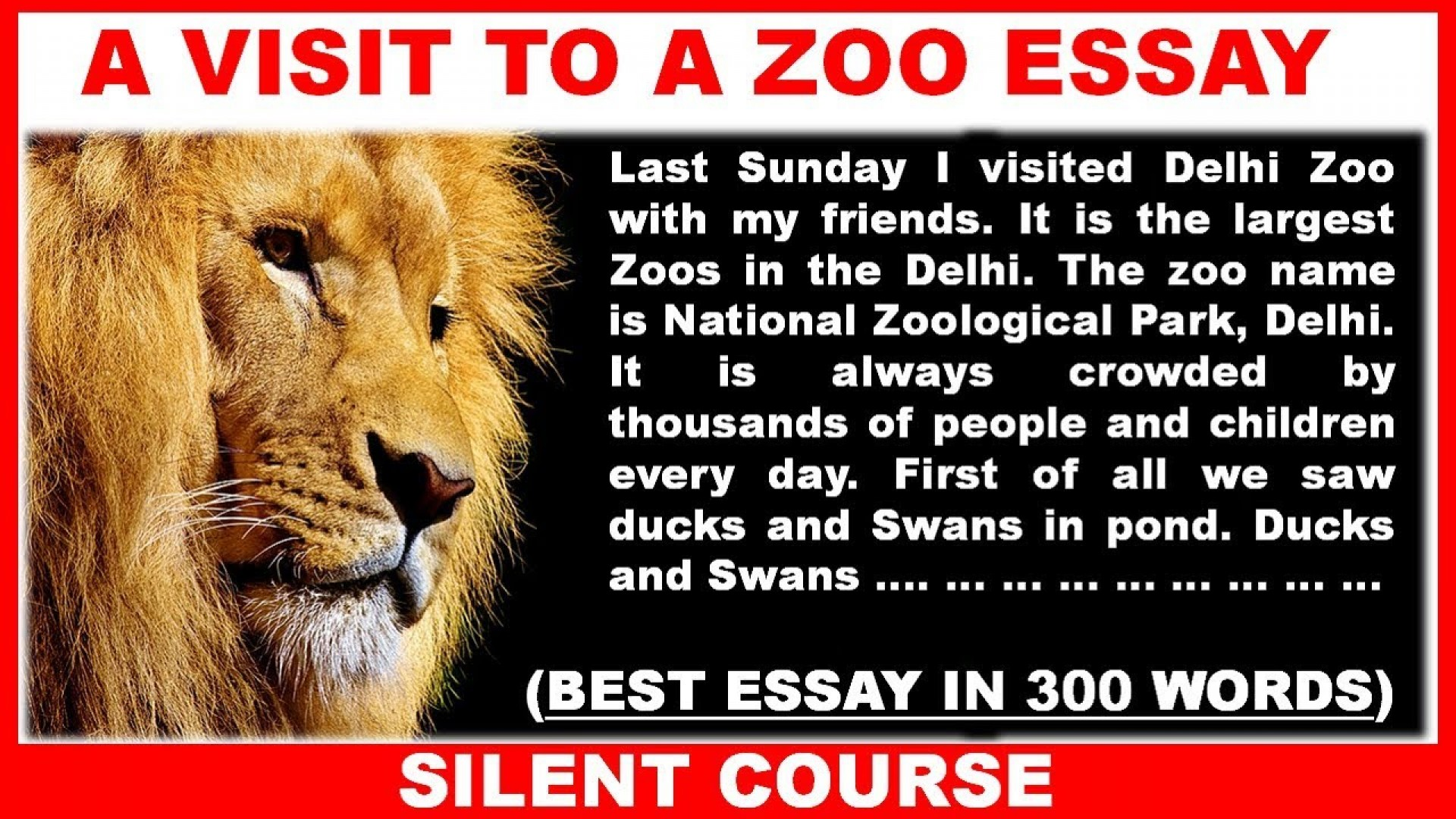 001 Essay Example Maxresdefault On Marvelous Zoo Visit To A For Class 10 Why Zoos Are Bad 1920
