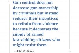 001 Essay Example On Gun Control John Mcginnis Incredible Laws Against