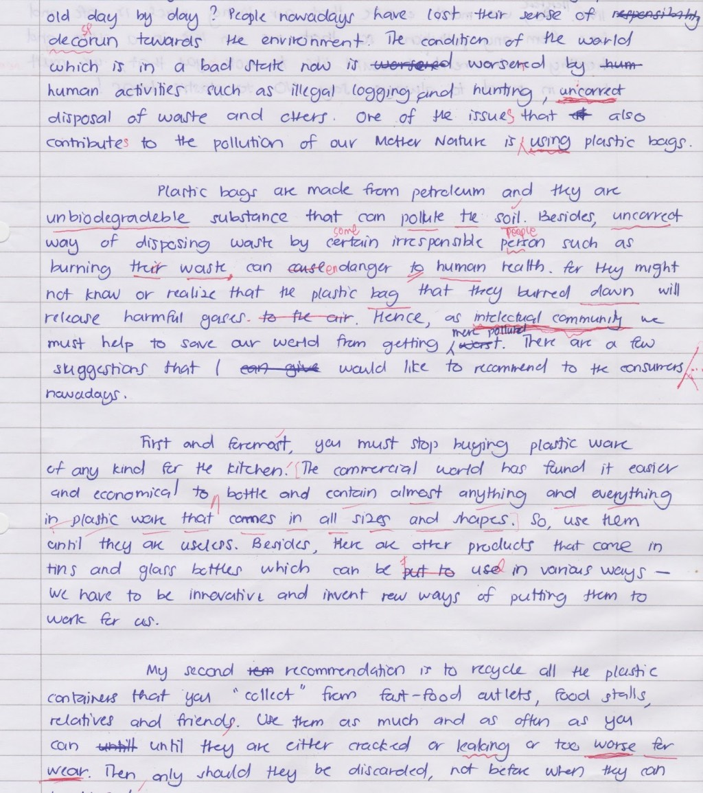 001 Essay Example Plastic Unforgettable Waste On Management In Hindi Recycling Topic Large
