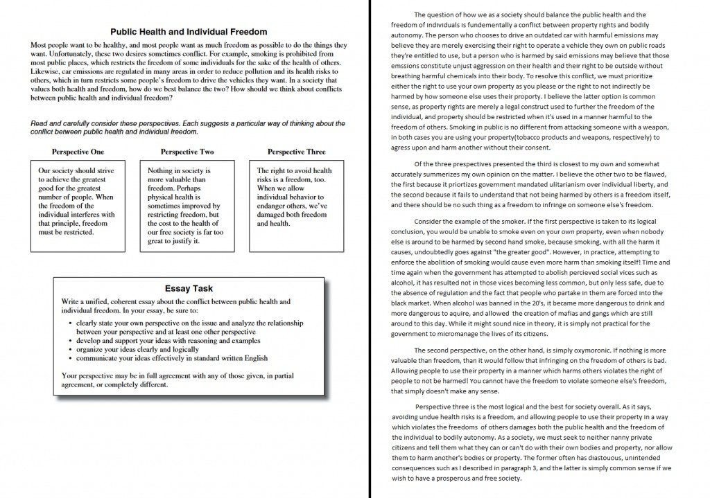 001 Essay Example Public Health And Individual Freedom Act Examples Dreaded Large