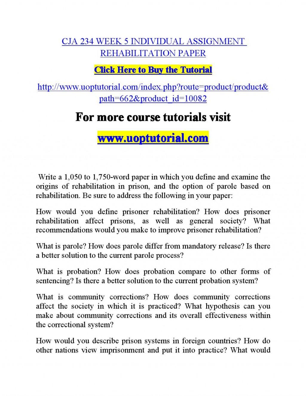 001 Essay Example Punishment Or Rehabilitation Page 1 Awesome Large