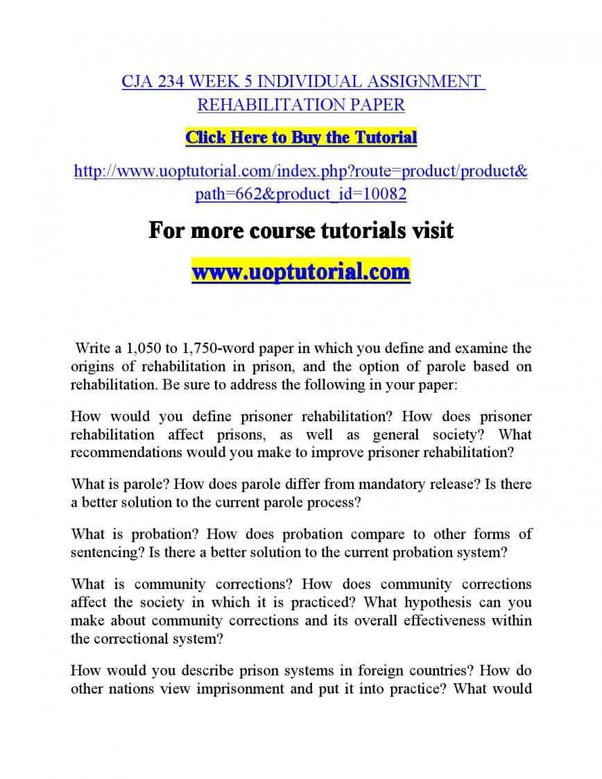 001 Essay Example Punishment Or Rehabilitation Page 1 Awesome