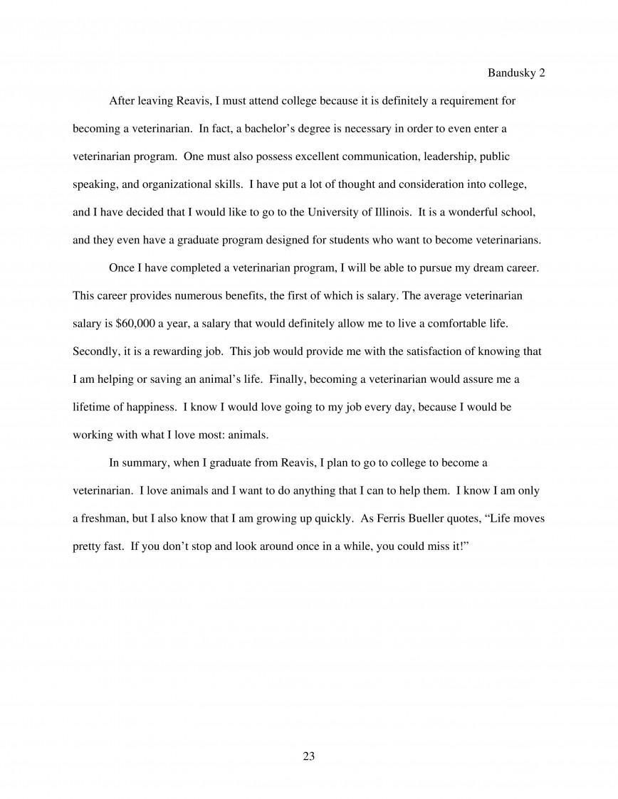 Essay of dream