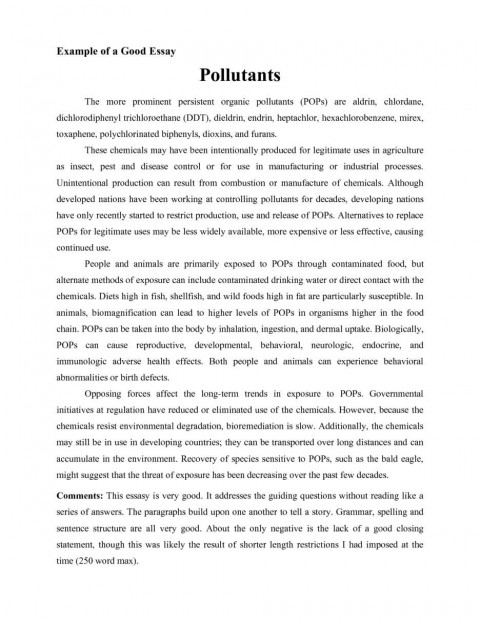 001 Good Essays Fascinating Essay Examples University Explanatory For Middle School Introduction 480