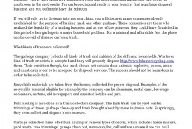 001 Lva1 App6891 Thumbnail Essay Example Segregating Fascinating Waste In School Introduction