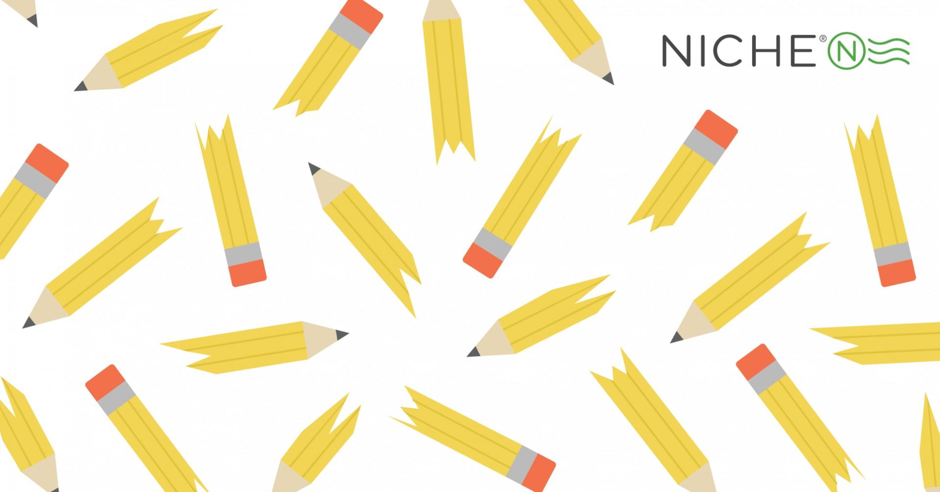 001 Nes Scholarship 1910px Easy No Essay Scholarships Striking 2015 2019 1920