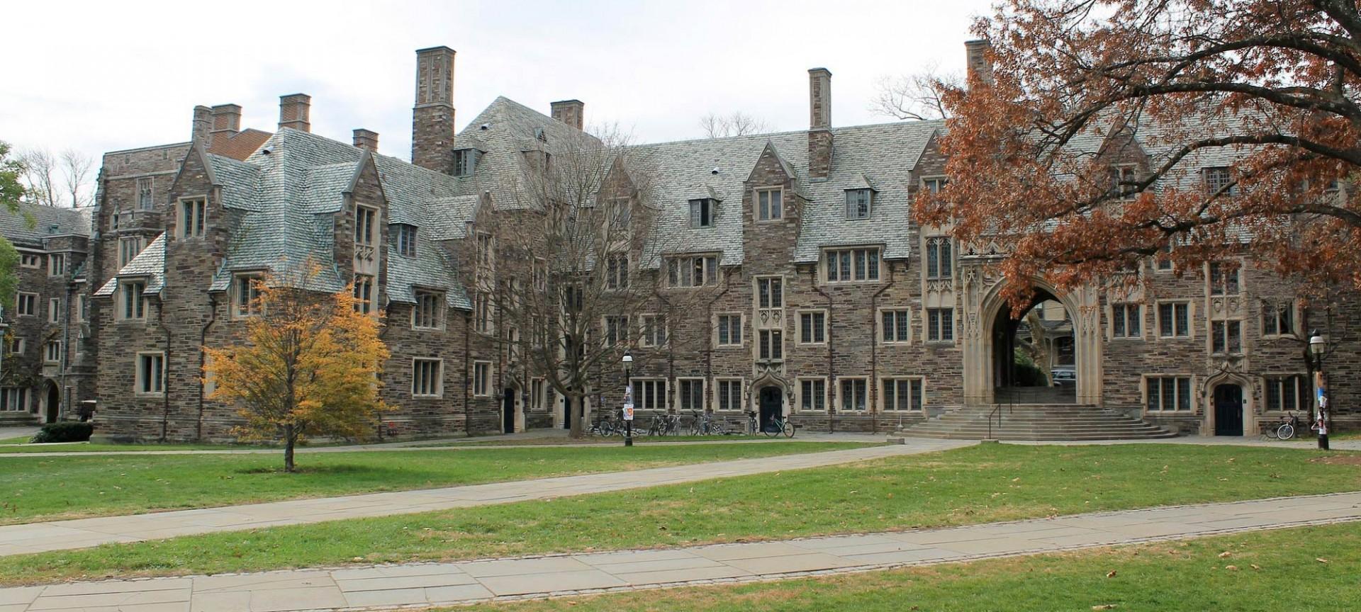001 Princeton Essay Astounding Review College Guide Graded Confidential 1920