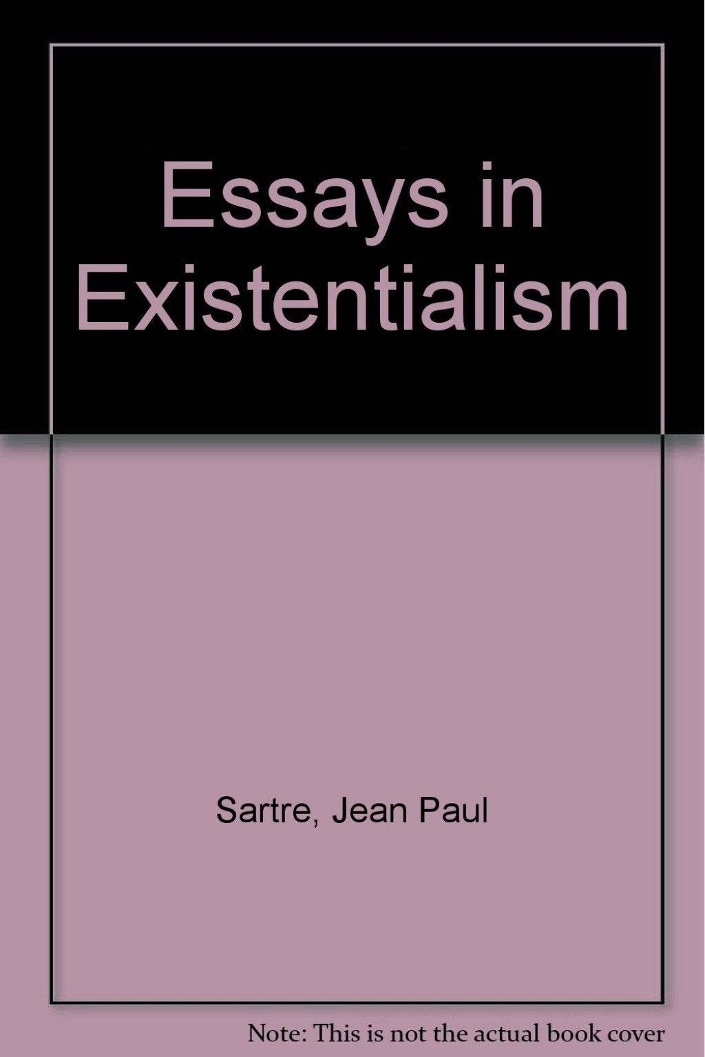 002 61qllswwwgl Essay Example Essays In Outstanding Existentialism Pdf Sartre Large