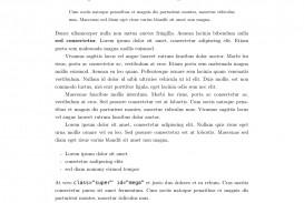 002 Academic Style Essay Example Fascinating Formal University Samples Harvard