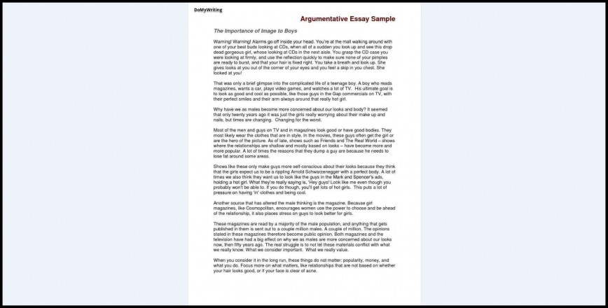 002 Argumentative Essay Sample Example Fascinating Best Top Topics 2017 Ever Written