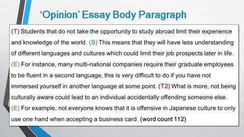 002 Body Image Essay Maxresdefault Fantastic Argumentative Topics Introduction Points 480