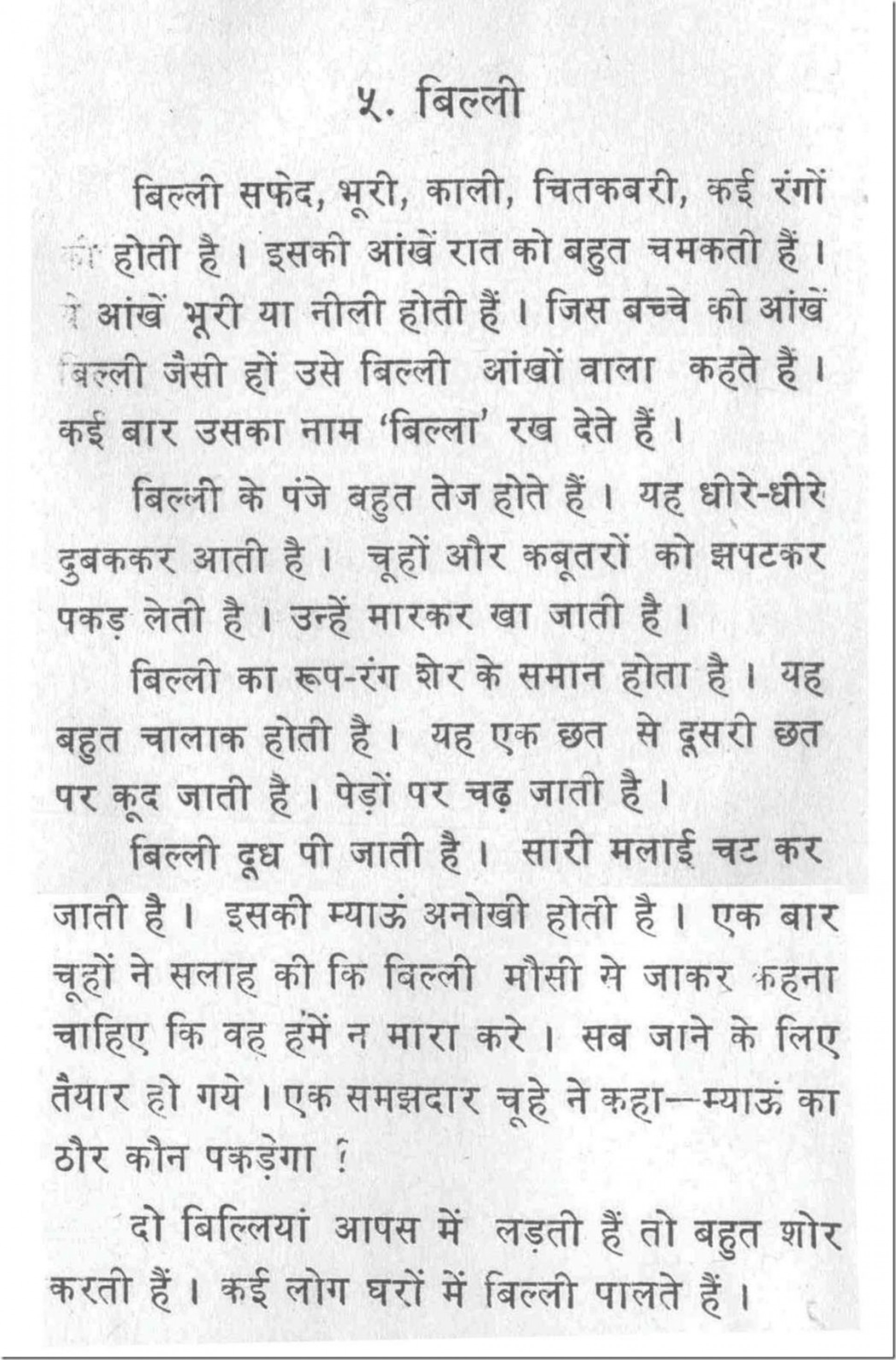 002 Essay Example Shocking Cat In English For Class 6 On Hindi 3 Information Marathi 1920