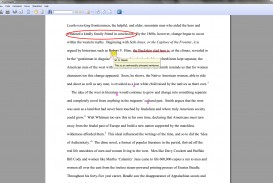 002 Essay Example How To Annotate An Wondrous A Movie In Critical
