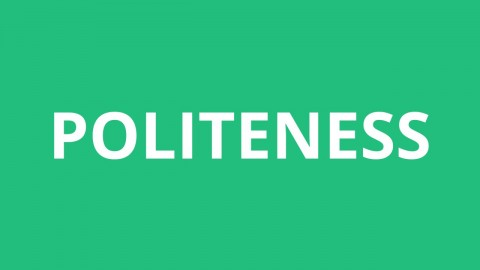 002 Essay Example On Politeness In Students Dreaded 480