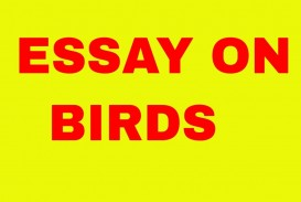 002 Essay On Birds Example Incredible Nest In Telugu Kannada And Animals