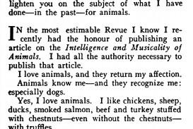 002 Essay On Vanity Example Music Animals 0001 Stupendous Fair Topics Montaigne's