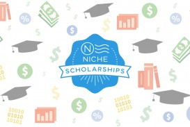 002 Niche No Essay Scholarship Example Striking $2000 2000 Legit