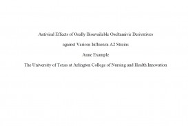 002 Presentation1 Essay Example Cover Page Impressive Apa Correct Title Proper Format