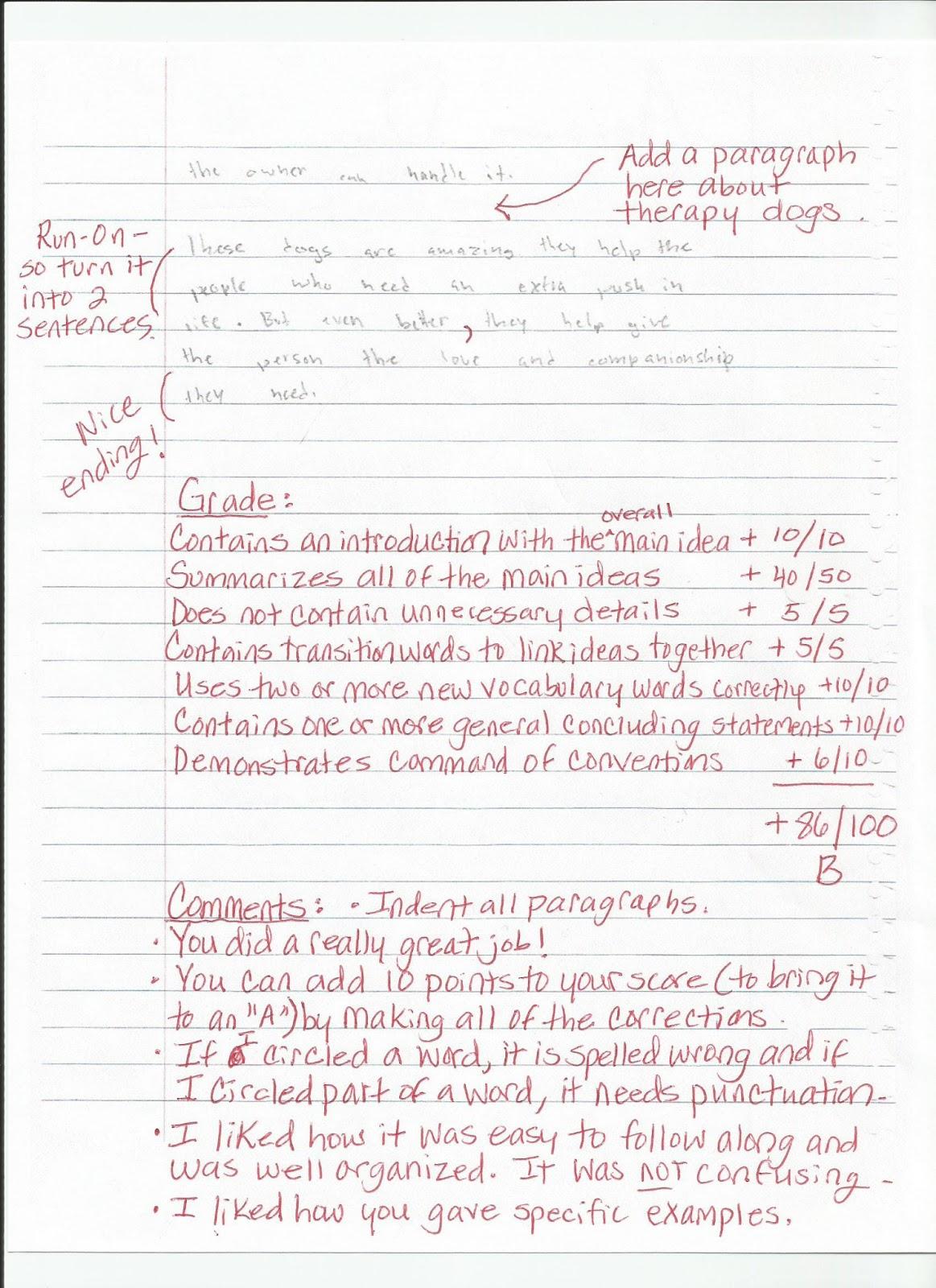 Opinion essay model