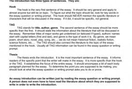002 What Is An Essay Question 007559301 2 Frightening Type Modified Questions