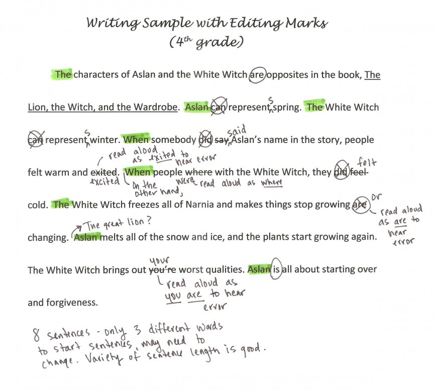 002 Writing Sample With Editing Marks1 Free Essay Checker For Grammar Incredible