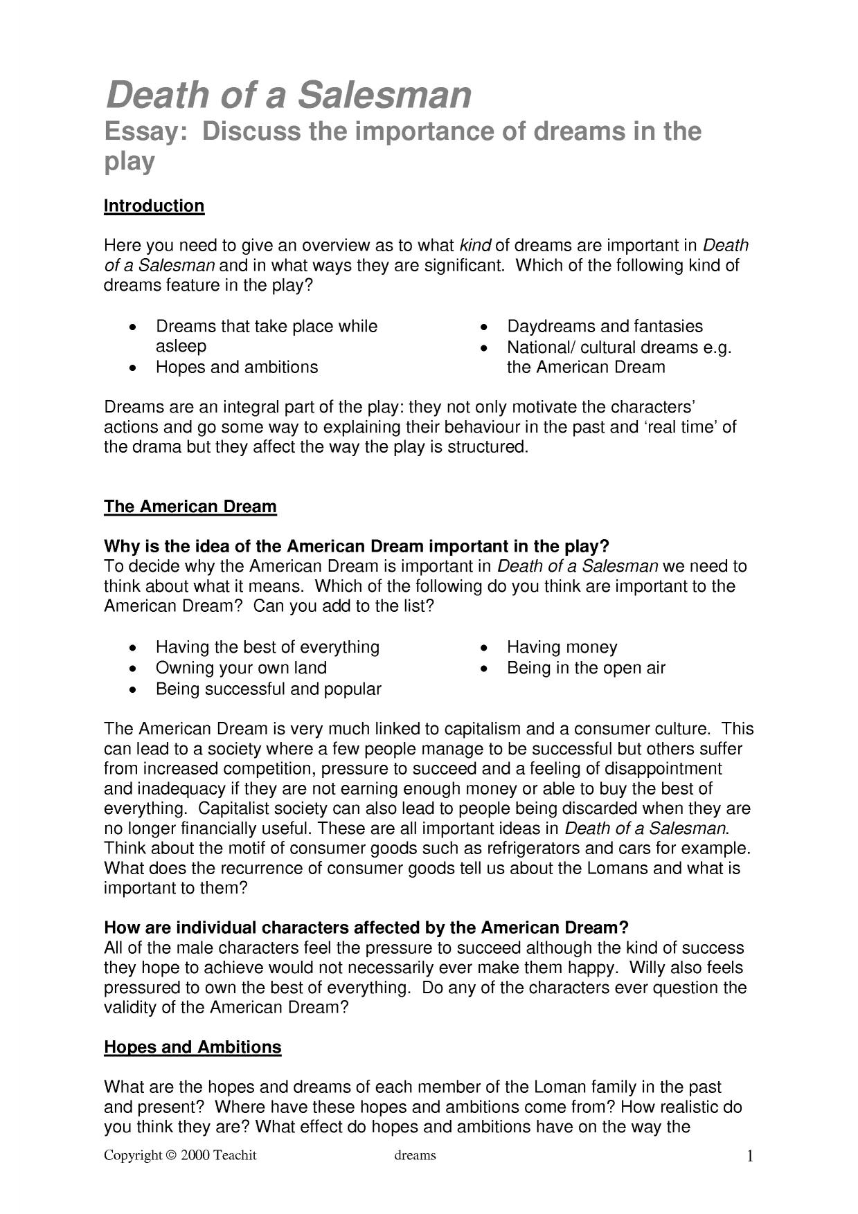 002 X16856 Php Pagespeed Ic Ebntk2isnc Essay Example Death Of Phenomenal A Salesman Topics Argumentative Full