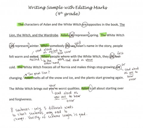 003 Essay Editor Writing Sample With Editing Marks1 Marvelous Service Generator Free 480