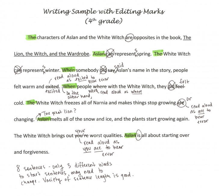 003 Essay Editor Writing Sample With Editing Marks1 Marvelous Service Generator Free 728