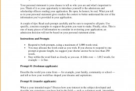 003 Essay Example College Word Limit 2520758773 Impressive Count Admission 2019