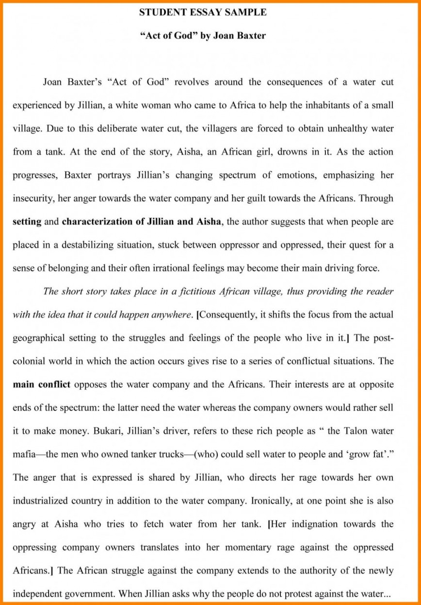 003 Essay Example Examples Of Process Essays Pdf How To Write Good Student Better Download Descriptive Great Law Steve Foster Lauren Starkey 1048x1508 Stirring Montaigne Michel De Selected English