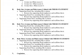 003 Essay Example How To Do An Outline Template Archaicawful Write For College A Paper Sample
