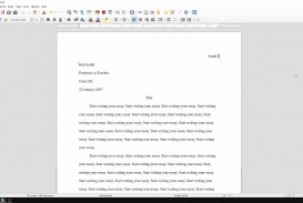 003 Essay Example How To Set Up An Singular My Paper In Mla Format A College