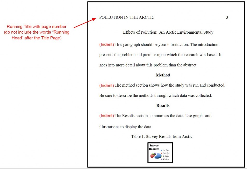 003 Essay Example In Apa Format Shocking Papers Written Research Paper Large