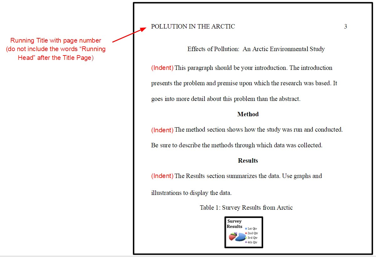 003 Essay Example In Apa Format Shocking Papers Written Research Paper Full