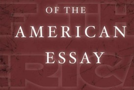 003 Essay Example Makingamericanessay John Stirring D Agata D'agata Next American The Pdf