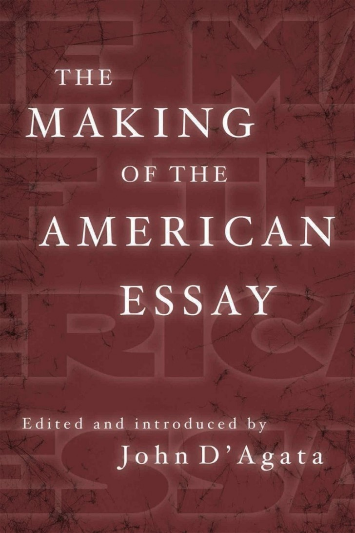 003 Essay Example Makingamericanessay John Stirring D Agata D'agata The Next American Pdf 728