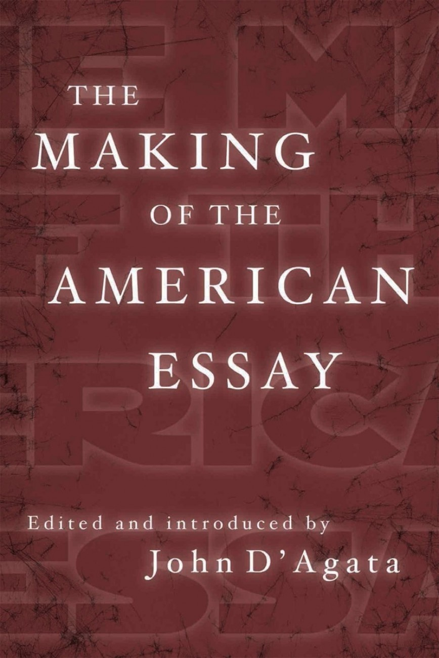 003 Essay Example Makingamericanessay John Stirring D Agata D'agata The Next American Pdf 868