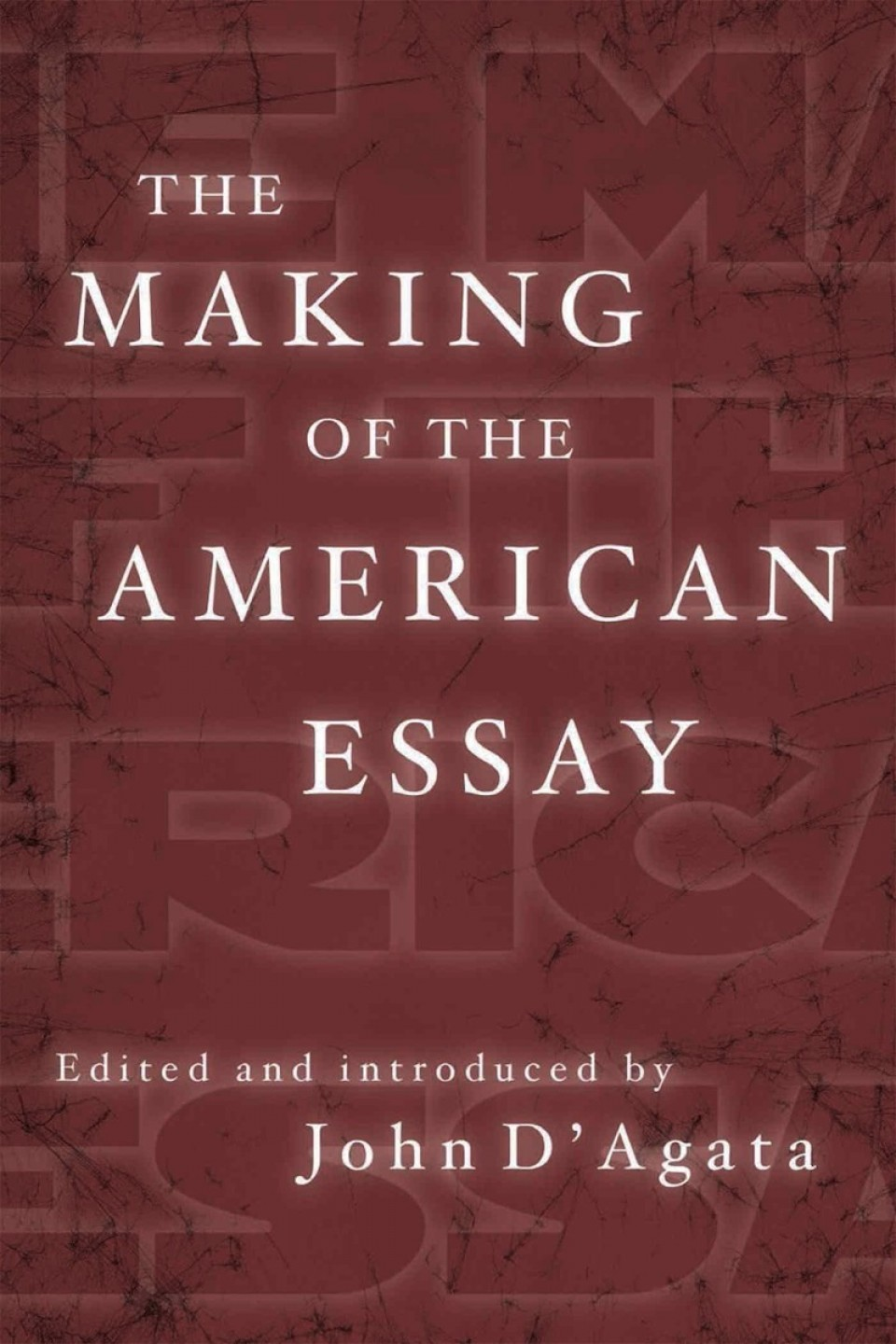 003 Essay Example Makingamericanessay John Stirring D Agata D'agata The Next American Pdf 960