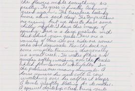 003 Essay Example My Father Hero Unusual Parents Superhero