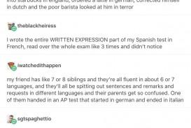 003 Essay Example Spanish Marvelous Urban Dictionary Joke Spanishdict