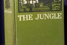 003 Essay Example The Jungle Upton Sinclair Book Rare Review