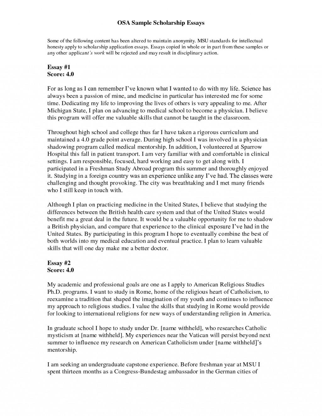 003 Essay Example Uvs74i83av Short Amazing Scholarships College Easy Large