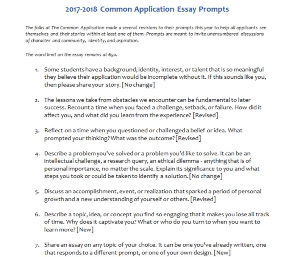 003 Essay Exampleer 3881415222 On Phenomenal Helper App Tool Writer Full